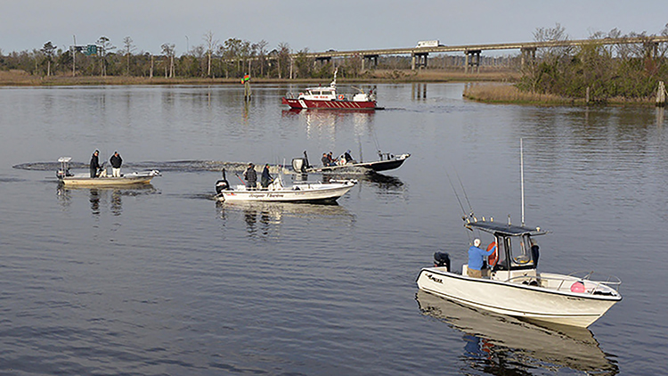 Fishing boats on the Cape Fear River
