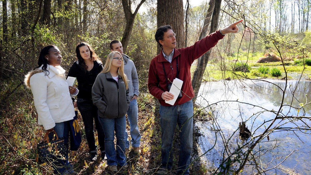 Professor and students on field trip in forest with wetlands