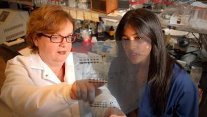 Christine McGahan and another researcher work in her lab