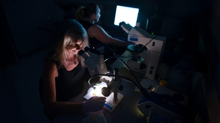 Mary Schweitzer and research team in her molecular paleontology lab