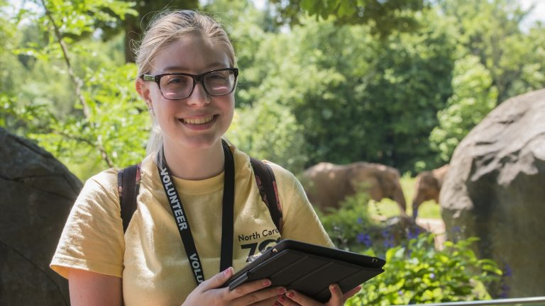 Katherine Kastl, a senior in zoology, studied elephants as part of her summer internship with the N.C. Zoo.