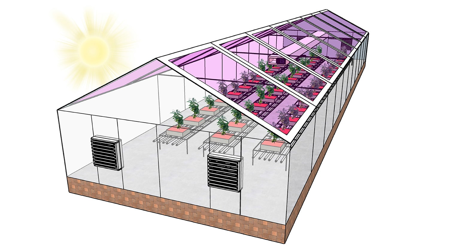 diagram of a greenhouse with translucent solar panels on the roof.