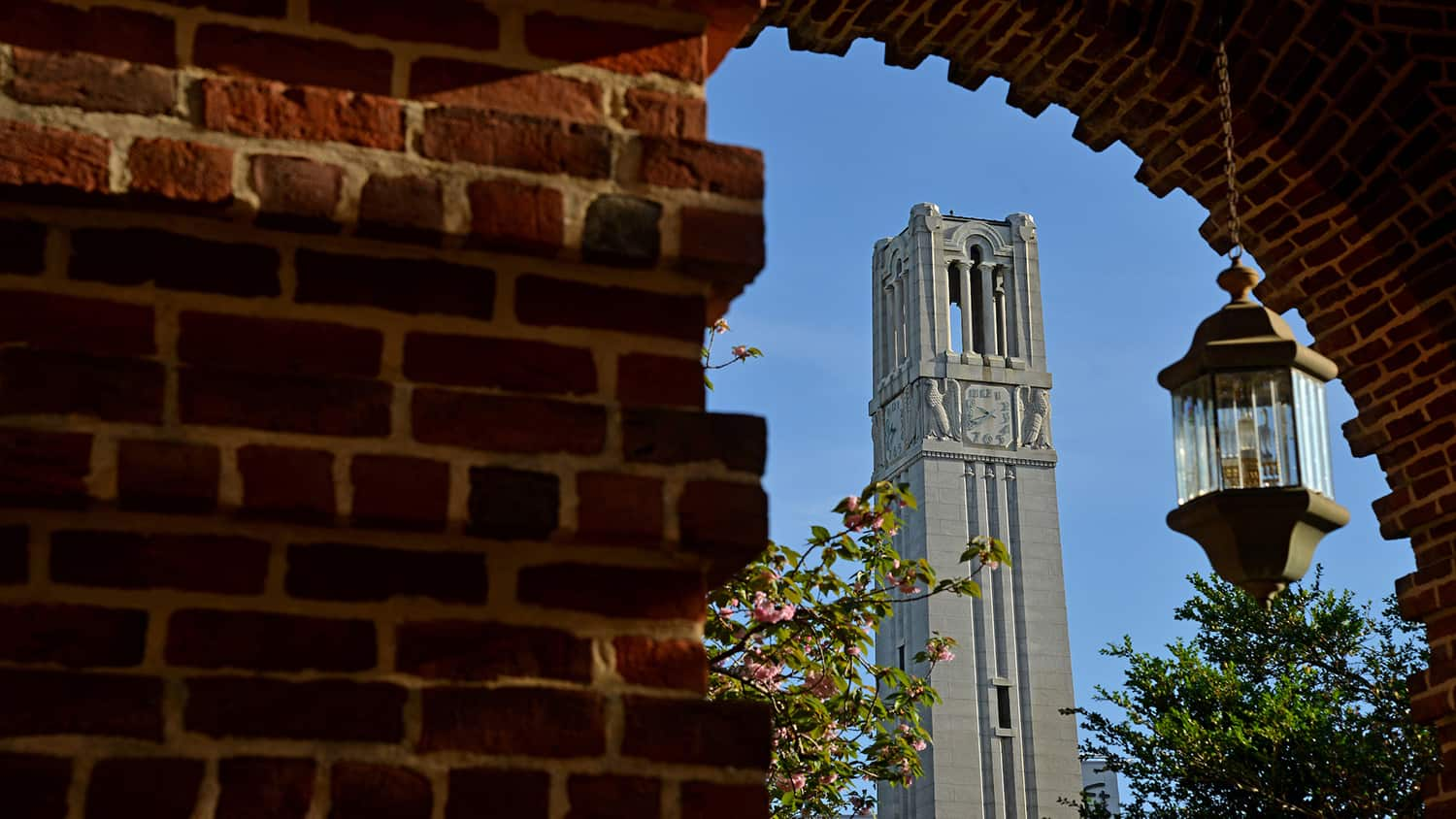 The Memorial Belltower framed under a brick arch on NC State's campus.