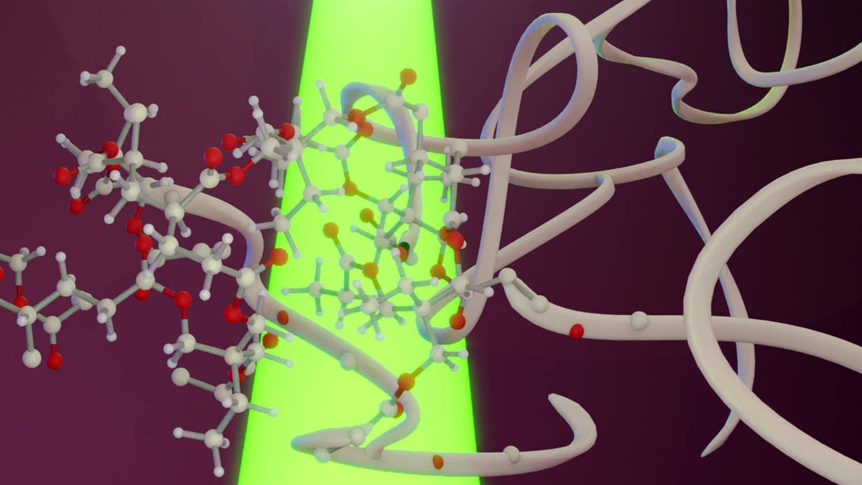 Low energy green light starts polymerization process