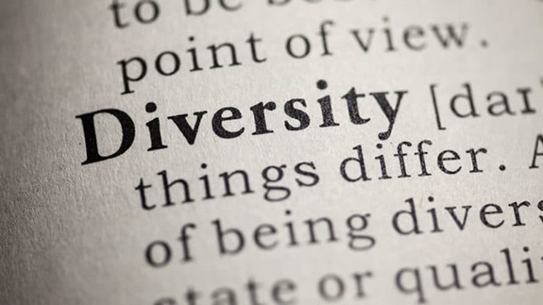 "The word ""diversity"" as shown in a dictionary."