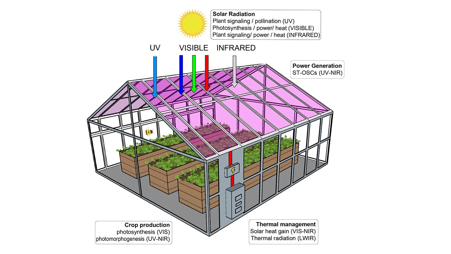 diagram of a solar-powered greenhouse