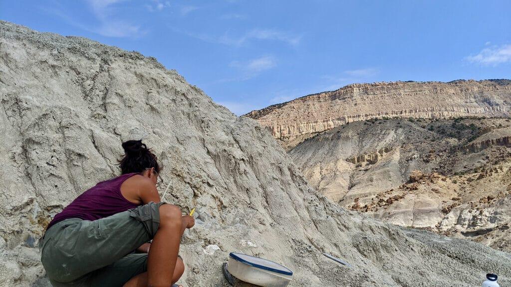Lindsay Zanno excavates dinosaur eggs in a rugged landscape